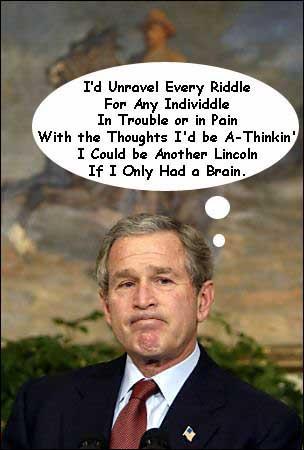bush brain
